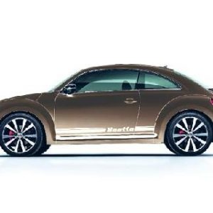 Beetle Decorative Film